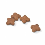 royal-canin-size-nutrition-mini-adult- (1)
