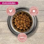Eukanuba Croquettes pour Chien Senior Medium  Poulet 2 noszanimos