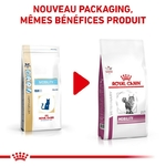 Croquettes Royal Canin Veterinary diet cat mobility NosZanimos