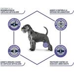 Croquettes ADVANCE Veterinary Diets - Chien Adulte - Articular Care Reduced Calories NosZanimos 1