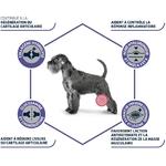 Croquettes ADVANCE Veterinary Diets - Chien Senior - Articular Care NosZanimos 2