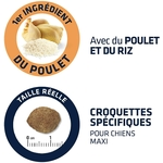 Croquettes ADVANCE pour Chien Maxi Adult - Light Poulet - 14kg 2