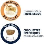 Affinity Advance - Croquette pour Chat Adult - Poulet et Riz 4
