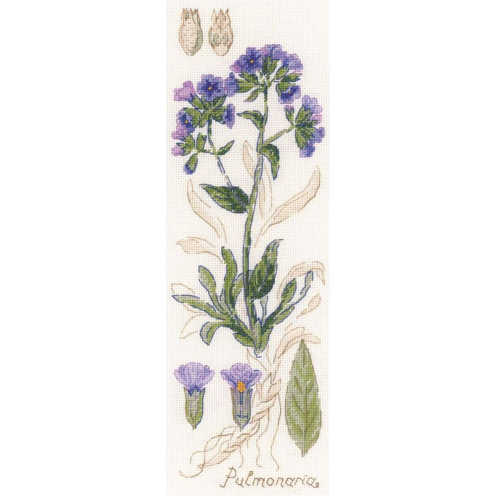 Riolis  Pulmonaria  1797