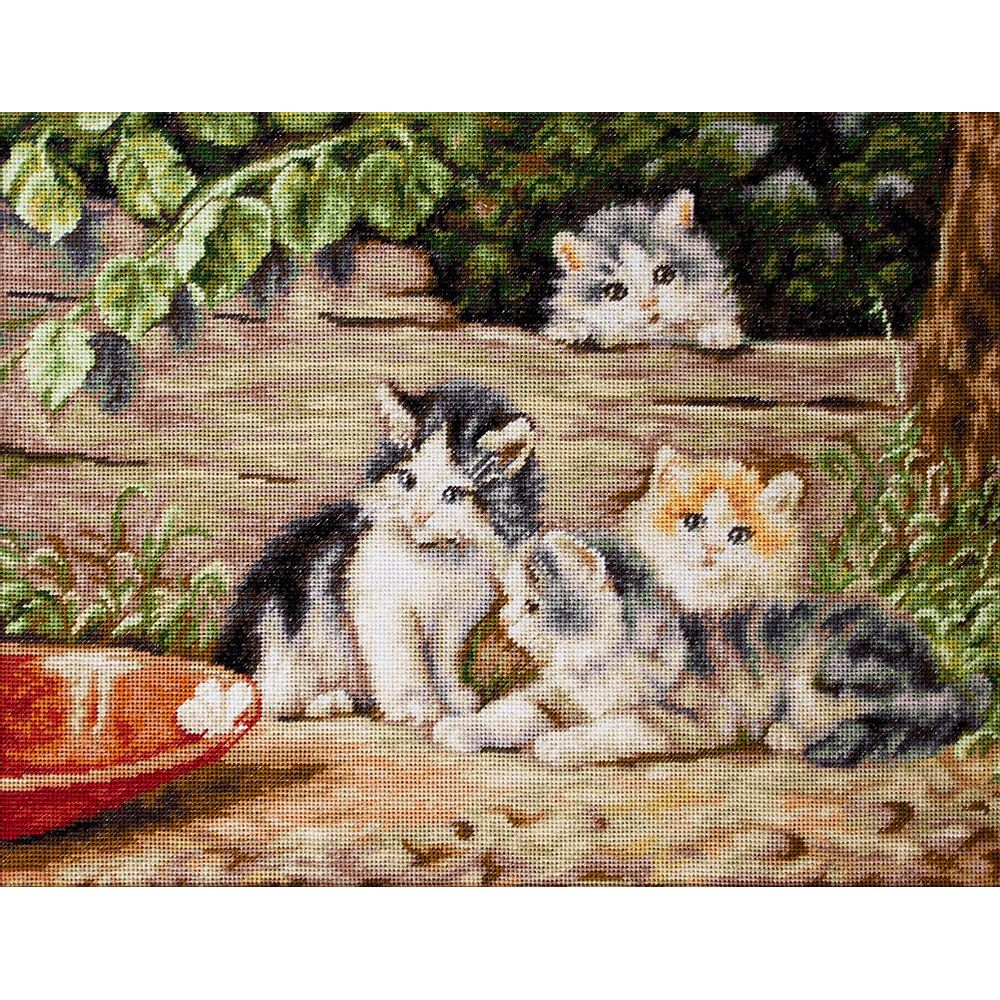 Les Chatons  B556  LUCA-S