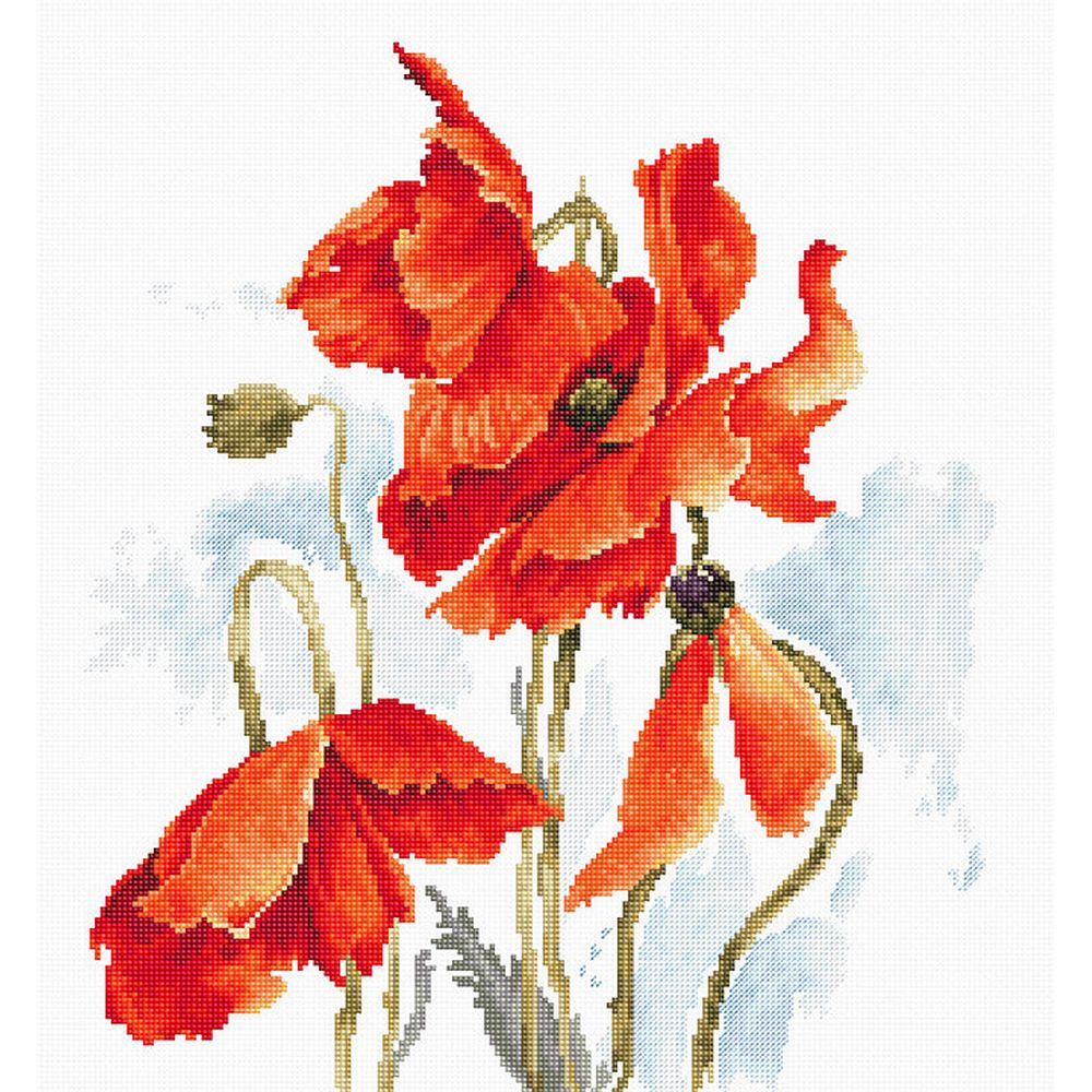 Coquelicots rouge  B2374  Luca-S