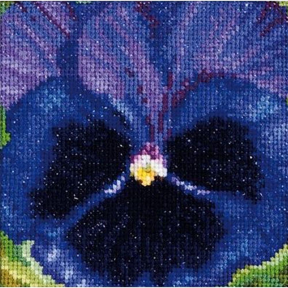 Pensée violette noir  460 Aida  Thea Gouverneur