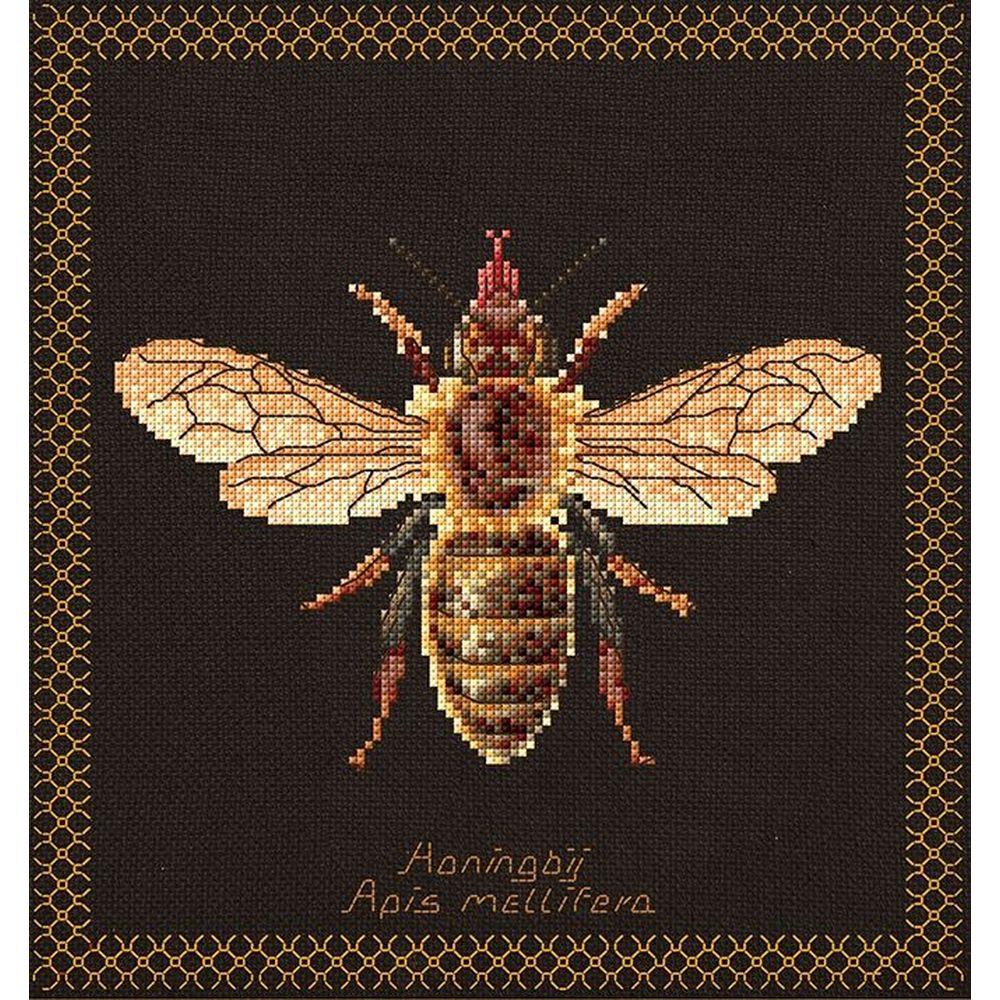 Abeille  Honey bee  3017-05  Thea Gouverneur