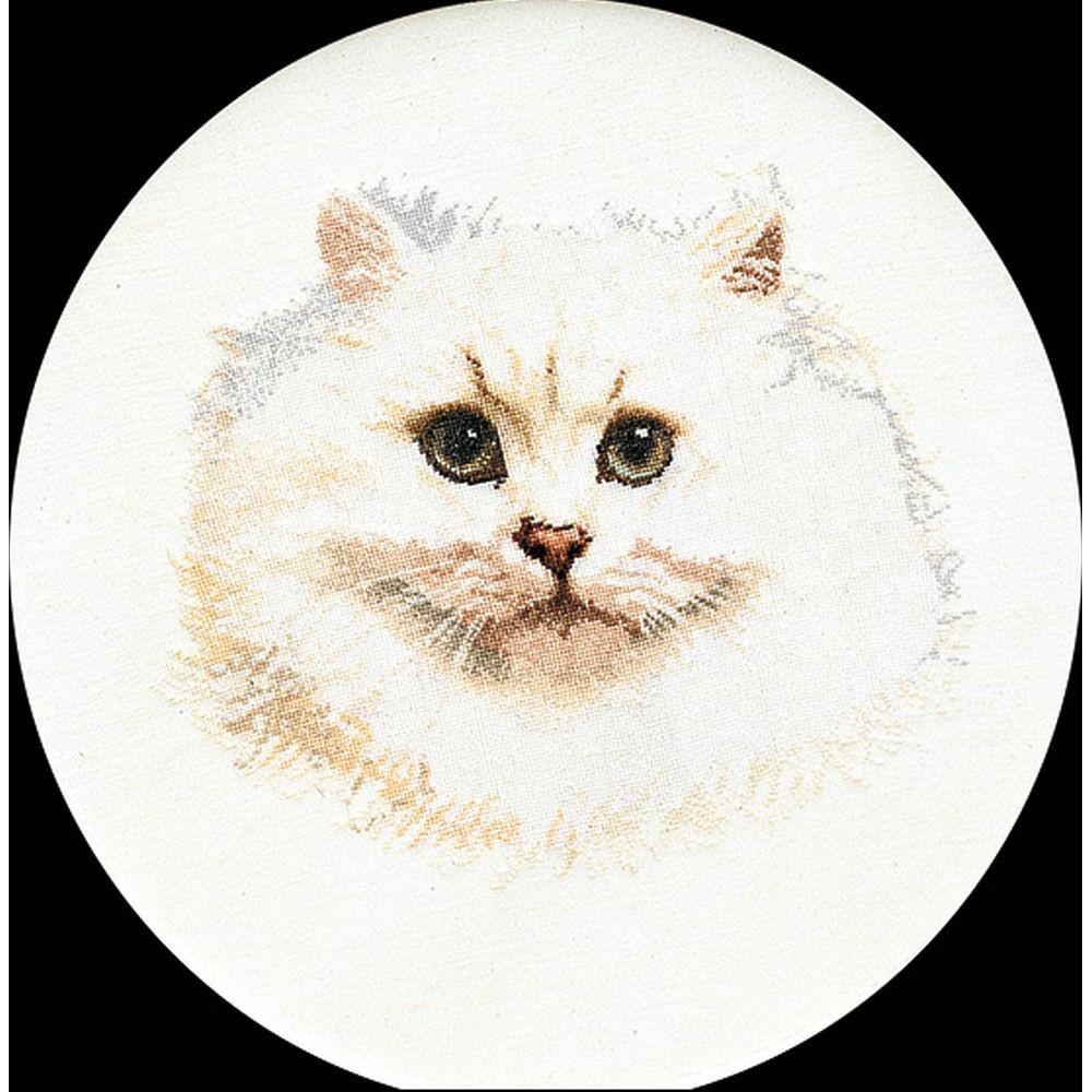 Thea Gouverneur  1045  Chat persan blanc