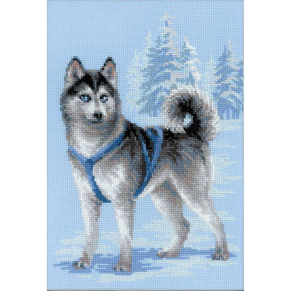 Husky le chien 1626  RIOLIS