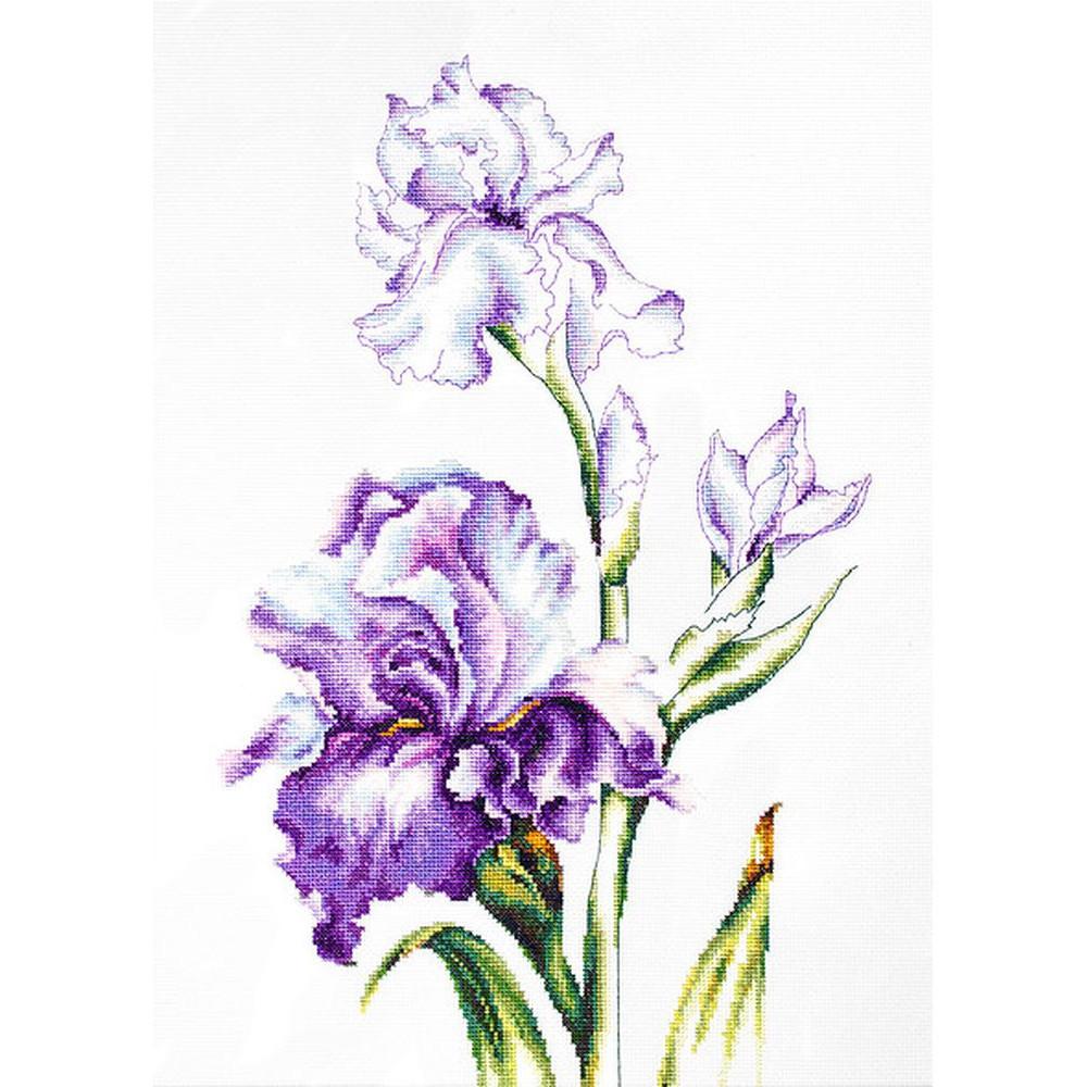 Fleurs Iris  B2251  Luca-S