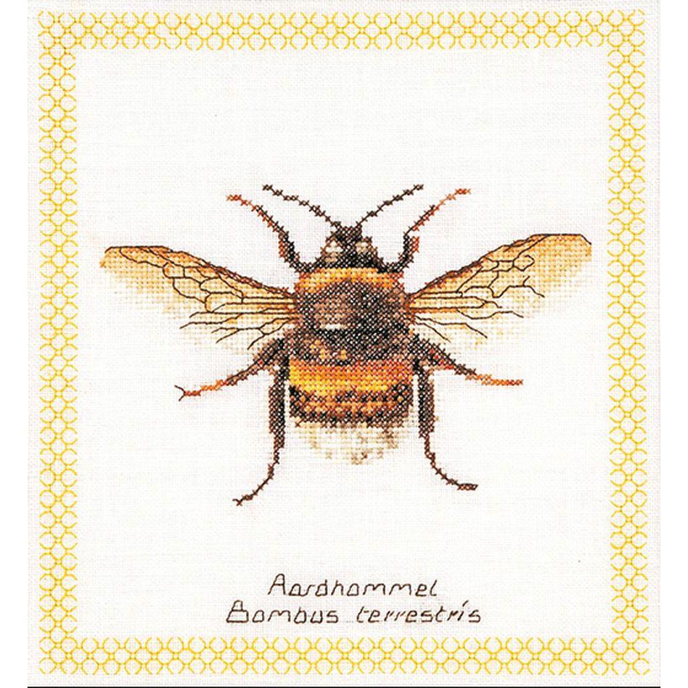 Bourdon  3018  Thea Gouverneur