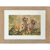 Deux jeunes tigres  B442  LUCA-S
