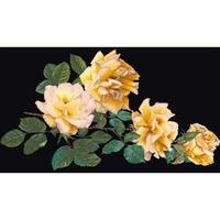 Thea Gouverneur  429-05  Rose