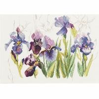 Lanarte  Irises  0008027