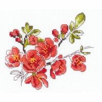 La Branche de Cydonia  1819  Riolis