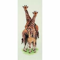 Famille de Girafe PCE740 Anchor