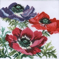 Fleurs  Anémones  XGF4 Bothy Threads  Kit point de croix