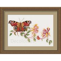 Butterfly-Honeysuckle - Kit Aïda - Thea Gouverneur 439A