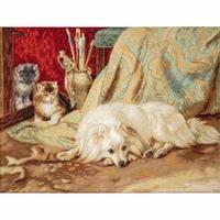 Le chien et les chats  B582  Luca-S