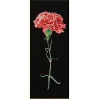 Carnation red - Kit Aïda noire - Thea Gouverneur 465-05