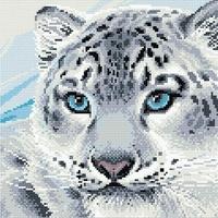 Léopard des neiges  AM0040  Riolis