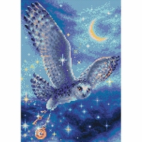 Magic Owl  AM0041  Riolis