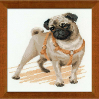 Pug Dog - Riolis - 1176