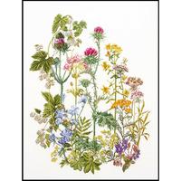 Thea Gouverneur  424  Fleurs des champs