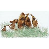 Thea Gouverneur - 449A   Vache et son veau