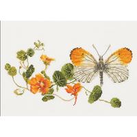 Thea Gouverneur  437  Papillon et Capucine