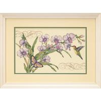 Dimensions  35237  Orchidée et colibri
