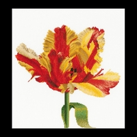 Thea Gouverneur  519  Red Yellow  Parrot  Tulip  Lin