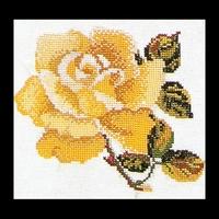 Thea Gouverneur  815A  Rose  Yellow  Aïda