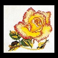 Thea Gouverneur  816A  Rose  Yellow Pink  Aïda