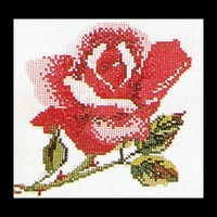 Thea Gouverneur  819A  Rose rose  Aïda