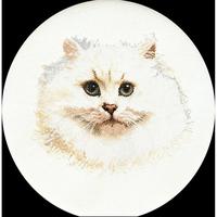 Thea Gouverneur  1045  Chat persan blanc  Lin