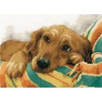 Adorable chien  0157432  LANARTE