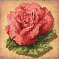 RIOLIS  0070PT  Rose