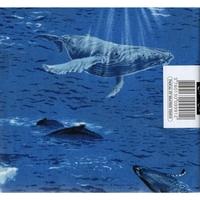 Baleine  A85