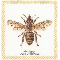 Honey bee  3017  Thea Gouverneur