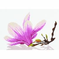 FLEURS DE MAGNOLIA  LANARTE  0008304