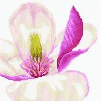 FLEURS DE MAGNOLIA  LANARTE  0008305