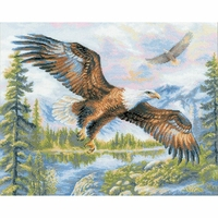 Aigle en vol  1471  RIOLIS