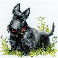Chien Scottish Terrier  1281  RIOLIS