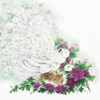 Paon blanc  100-030  RIOLIS