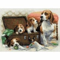 Familles de Beagle  1328  RIOLIS