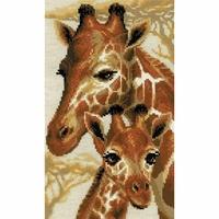Girafes  1697  Riolis