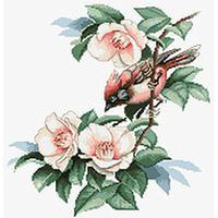 Oiseau dans les fleurs  B299  Luca-S
