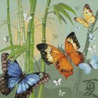 Papillons  1336  Riolis